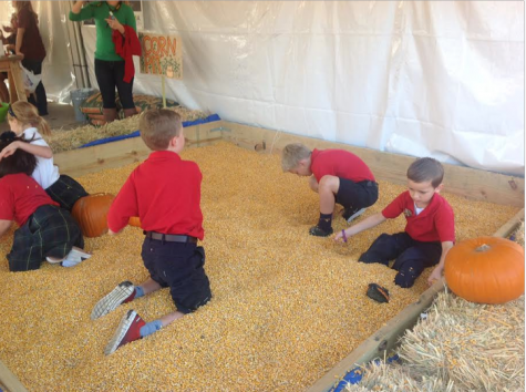 Pumpkin patch offers opportunity for fundraising and festivities