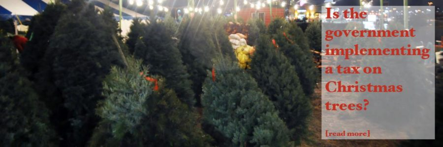 A Christmas tree controversy