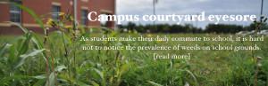 Campus courtyard eyesore