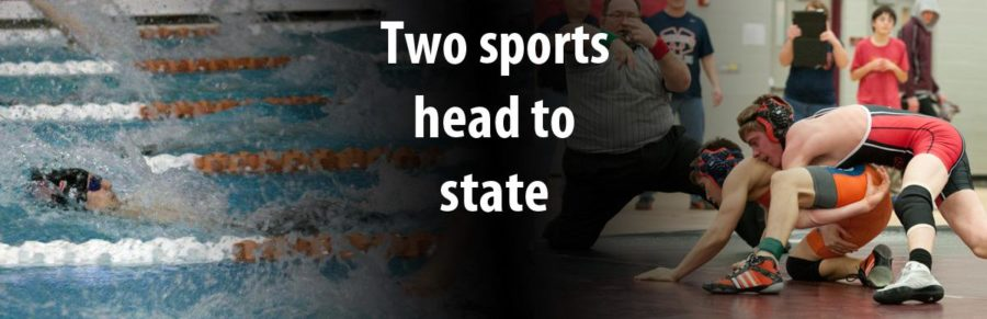 Two sports head to state