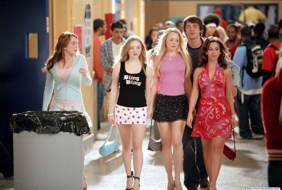 Many girls picture the high school experience to be like the movie Mean Girls.