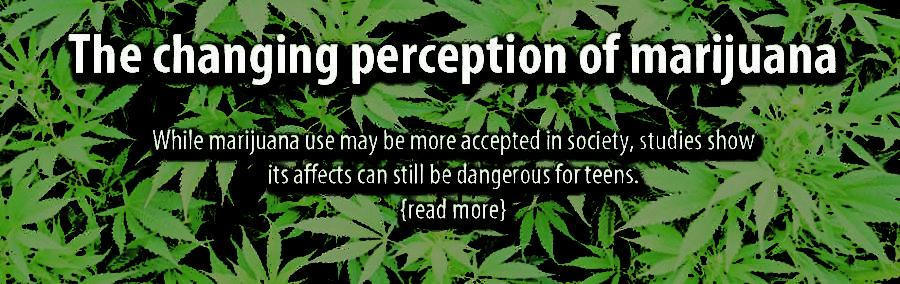The changing perception of marijuana