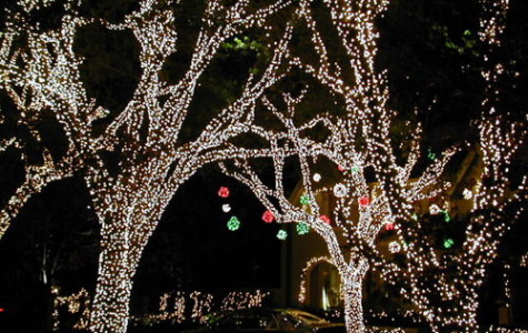 DFW holiday lights display