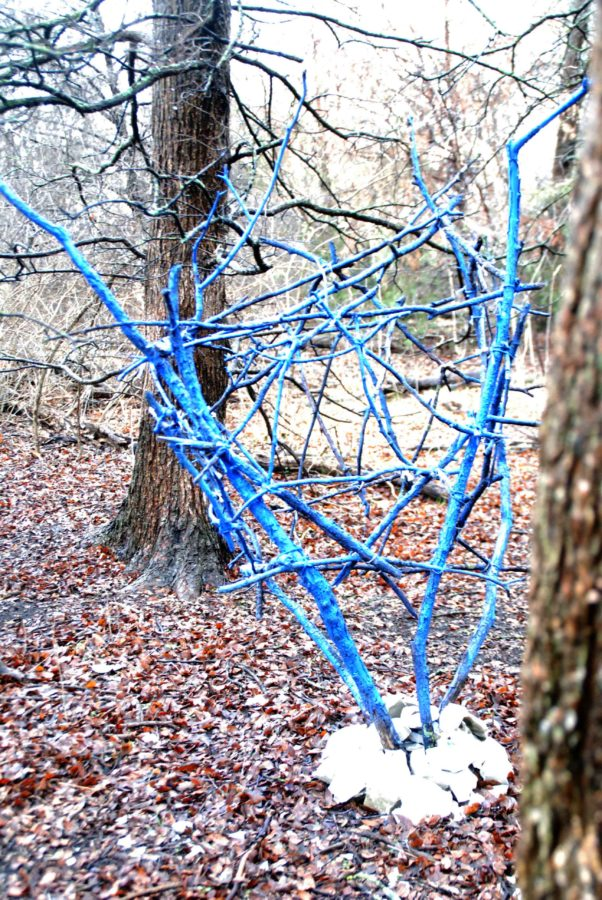Senior Audrey Holstead used a variety of materials such as sticks, rocks, twine, and spray paint to complete her art installation.