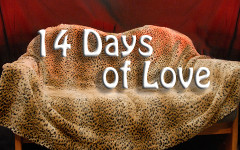 14 Days of Love: Jessica Goodrich and Mark Scott
