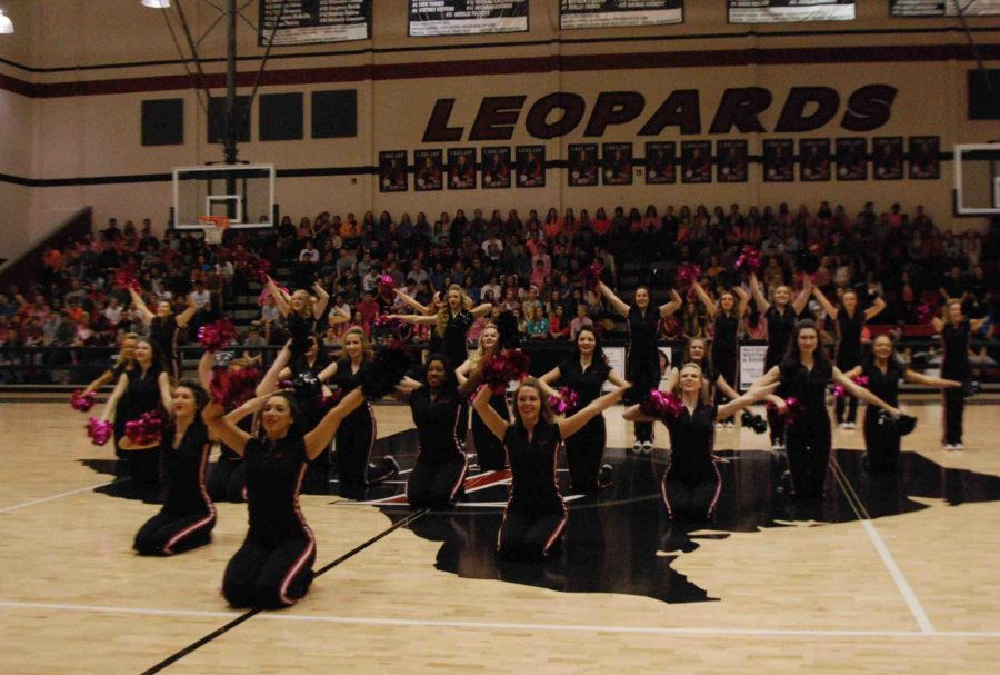 The Majestics perform in the Pink Out pep rally on Oct. 17, 2014, all with a pink pom-pom to spread breast cancer awareness.
