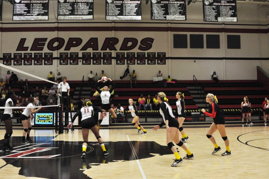 With her teammates awaiting the ball, junior Jordan Fate gets ready to set the ball.