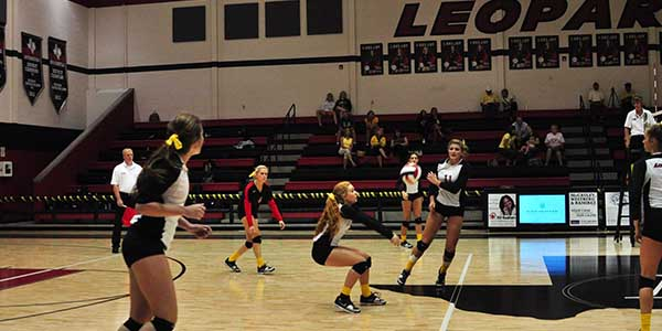 While district playoffs were not as successful as planned, varsity volleyball still plans on being an aggressive competitor in the run for state.
