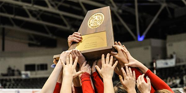 Volleyball wins State