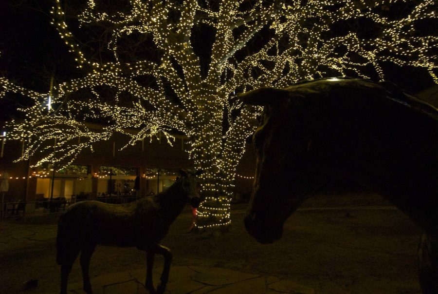 The bronze horses and creek are a popular spot for Homecoming and Prom pictures, but in the winter time the trees are lit up.
