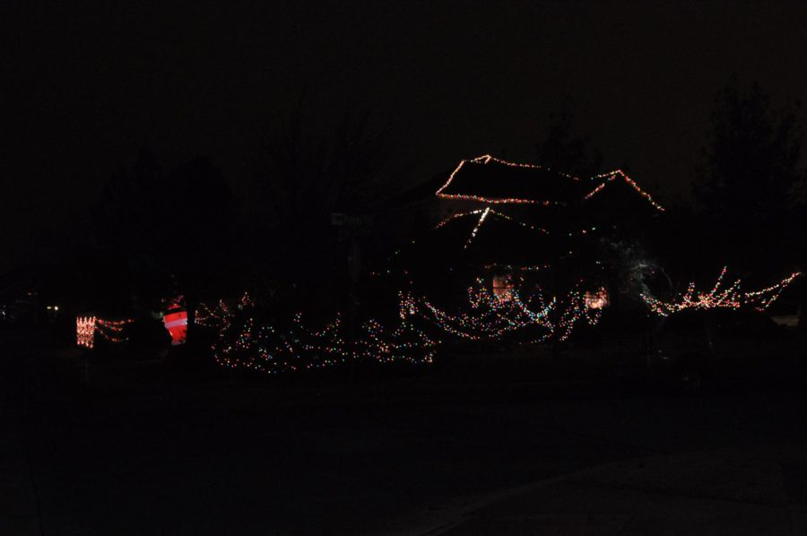 Also located in Lost Creek the hanging of multi-colored lights in the trees and around the house
