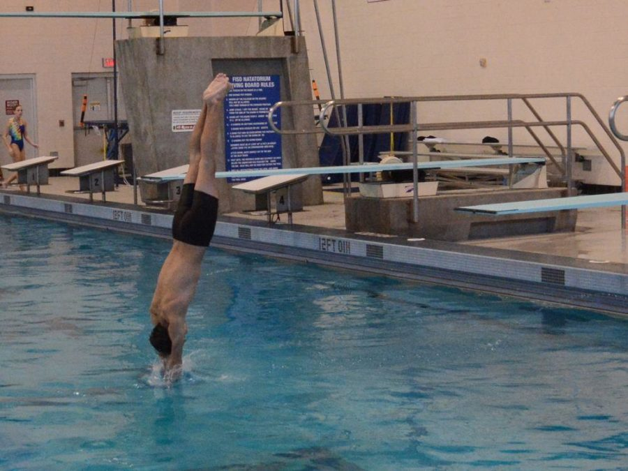 Divers+learn+a+variety+of+flips%2C+spins%2C+and+dives+to+compete+in+diving+competition.