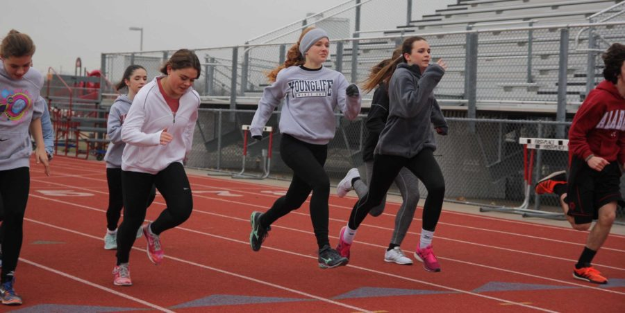 The area track meet is being held in Little Elm today. Students are competing for a chance at the regional meet.