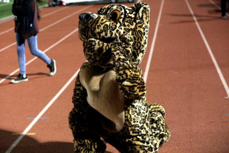 Senior Mackenzie Patrick was the middle school mascot in tenth grade, and now has been the high school mascot for three years.