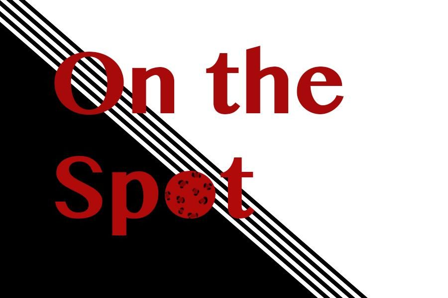 On the Spot: Students, faculty share opinions on climate change