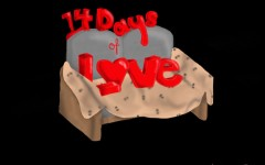 14 Days of Love is a Red Ledger series featuring couples the 14 days leading up to Valentine's Day to talk about their love staring on Feb. 1.