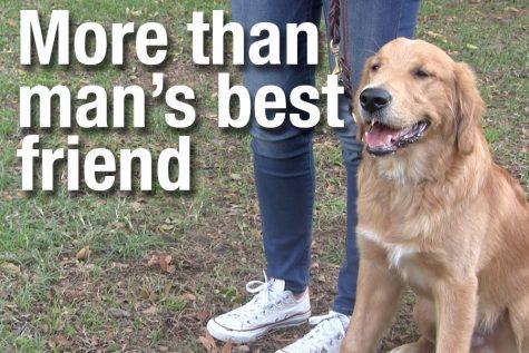 Video: More than man's best friend