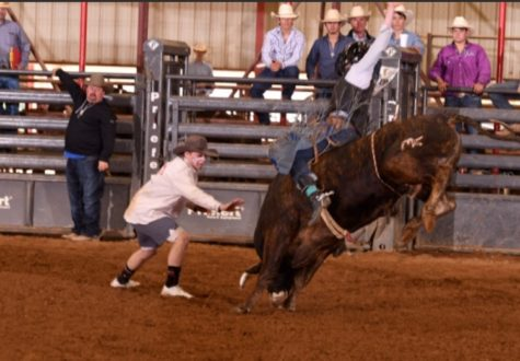 Junior Luke Casteele spends his free time working as a bullfighter in rodeos. He plans to use this hobby to eventually join the rodeo team at Texas Tech University.