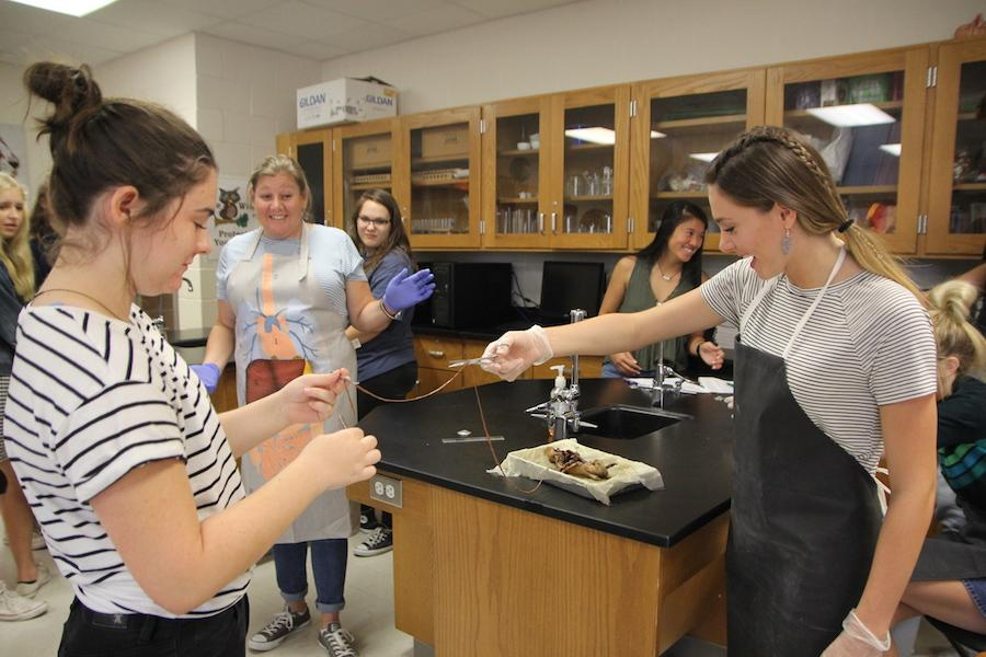 Theresa+Dollinger+works+with+seniors+Abby+Eaton+and+Eleise+Brooks+during+rat+dissections.+