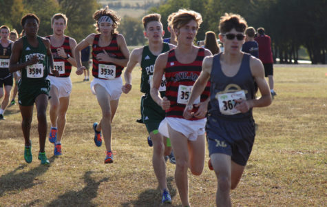 Cross country qualifies for regional championship
