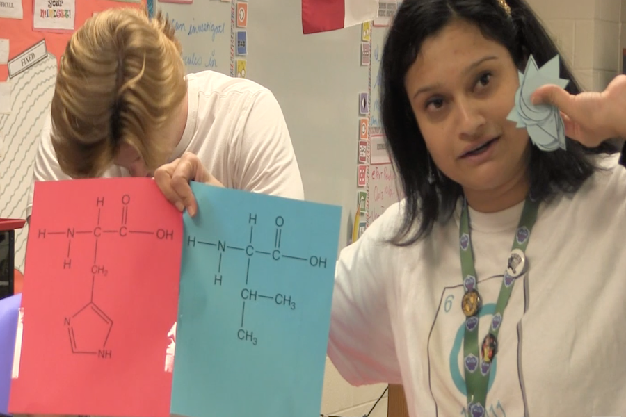 Video: Mrs. Syed's 'Biomolecule Build Day'