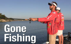 Video: Gone fishing