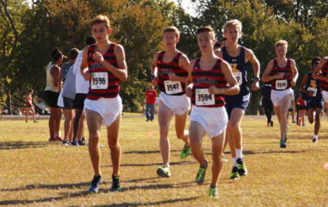 Cross country finishes successful regional meet