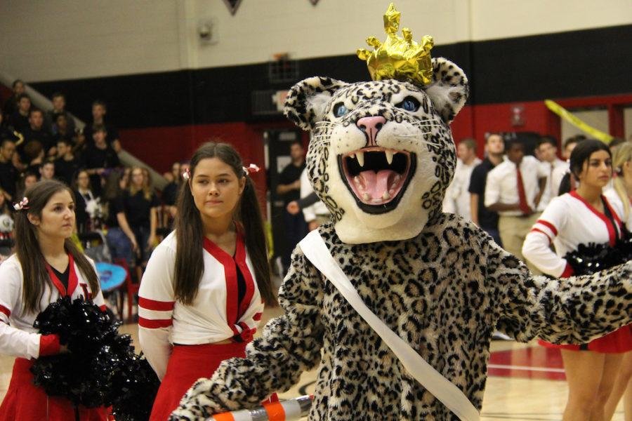 Bella+entertains+as+Leo+the+Leopard+at+the+homecoming+pep+rally.