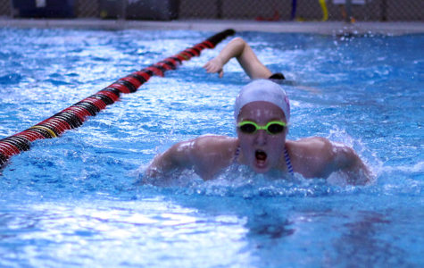 Swim team approaches regional meet