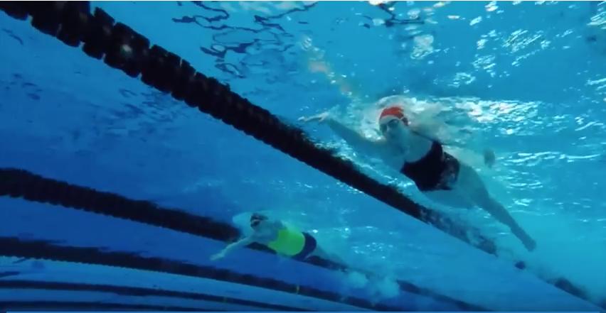 Video: Swim dives into state