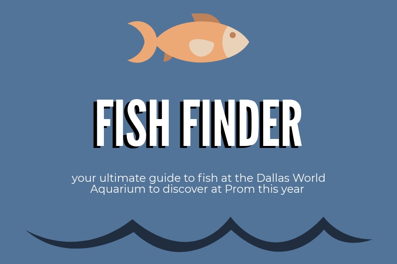 Prom to be held at the Dallas World Aquarium on April 14 from 8-11 p.m.