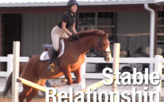 Video: Stable Relationship