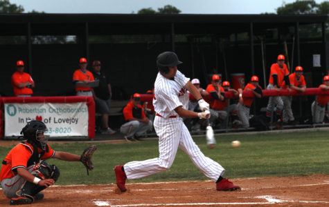 Baseball hopes to stave off elimination against Texarkana