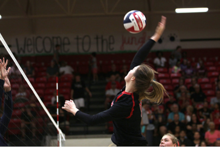 Senior Madison Waters spikes the ball over the net.