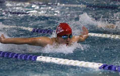 Swim and dive to head to Lone Star Classic
