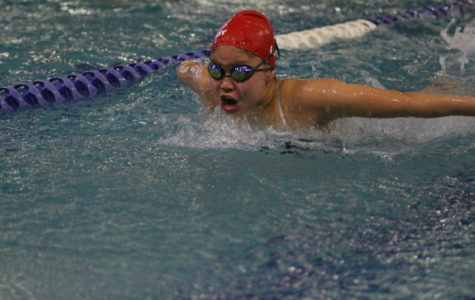 Swim and dive to partake in district meet