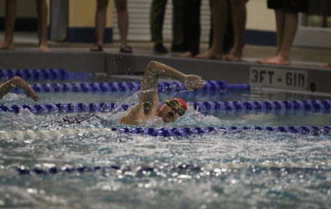 Swim and dive to travel to Austin for state meet