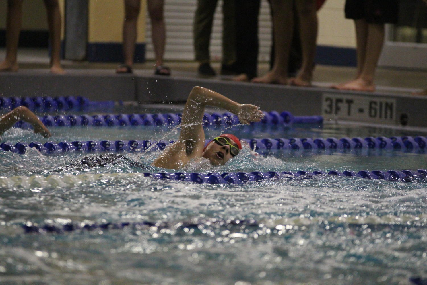 The swim and dive team has advanced 8 swimmers and 1 diver to state in Austin.