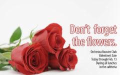 Orchestra begins Valentine's sales