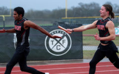 Track and field to send 16 competitors to regionals