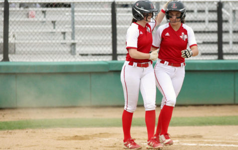 Softball looks towards future after promising season