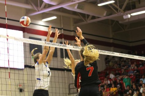 Leopards may be set to name new volleyball coach