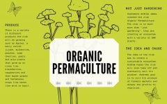 Students develop sustainable ecosystem through Organic Permaculture club