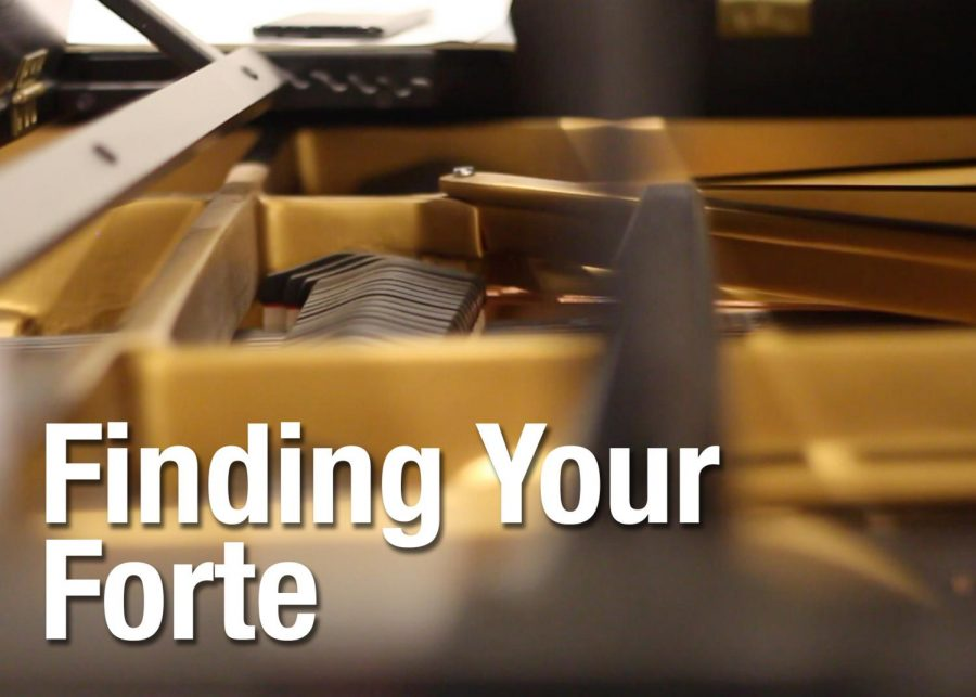Video: Finding Your Forte