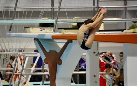 Ana Laura Faora began diving four years ago. She said the adrenaline rush is what motivates her to compete.