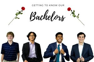 Get to know the bachelors