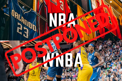 Nearly all professional sports have either been postponed or cancelled for the season.