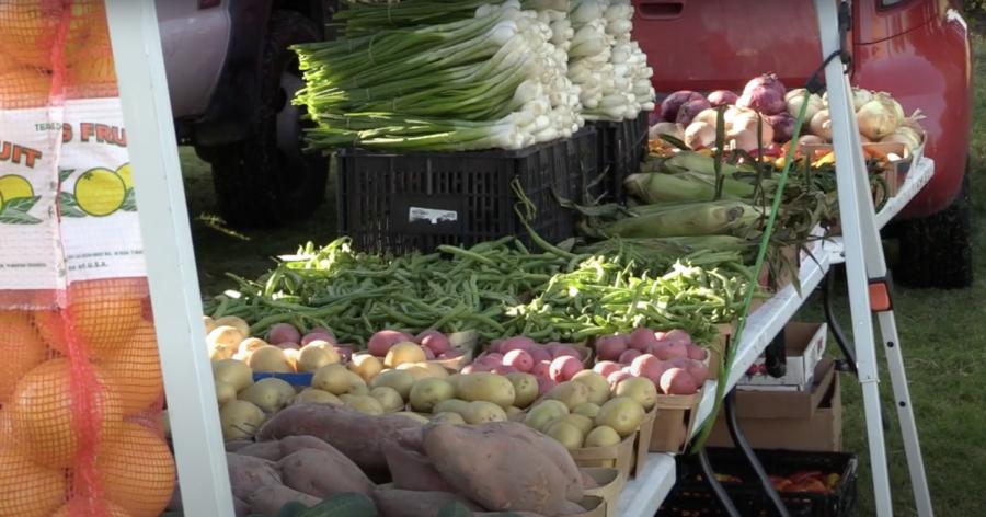 VIDEO: Farmers market finds