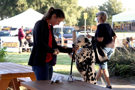 A community member plays with their dog. Many people brought their dogs to walk around the farmers market.