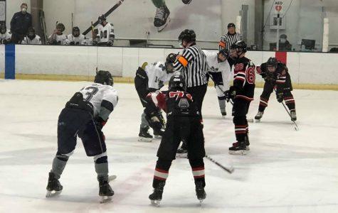 Hockey skates into play